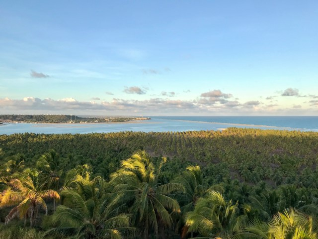 Vista da Lagoa do Roteiro , Coqueiral e do mar da Praia do Gunga