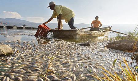 أهم ملوثات المياه وآثارها