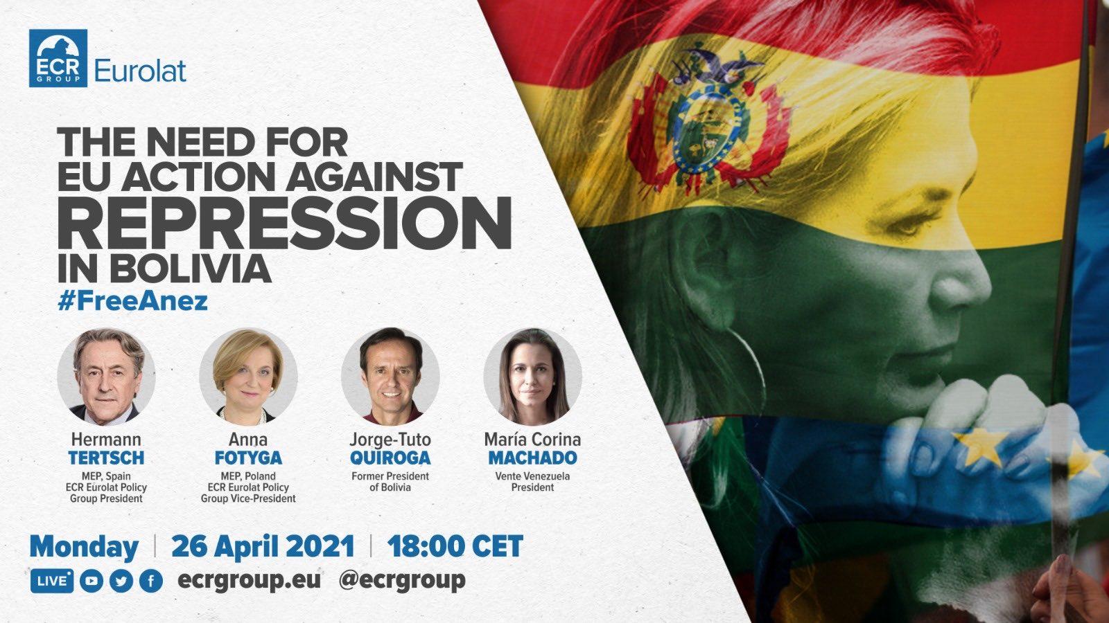 Webinar de la reunión podrá ser seguida desde Bolivia / RRSS