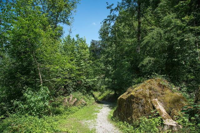 Historische Höhenweg von Bendern nach Schellenberg  Wandern Liechtenstein 14