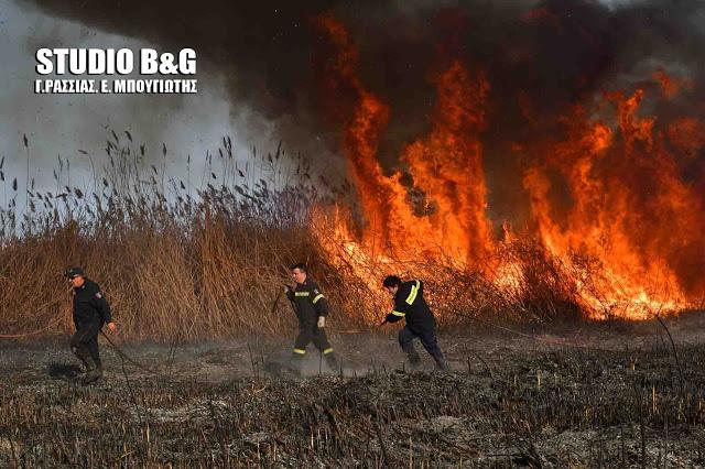 Μεγάλος ο κίνδυνος πυρκαγιάς την Πέμπτη στην Αργολίδα