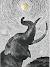 எல்லோராவின் பதினான்கு கட்டளைகள்