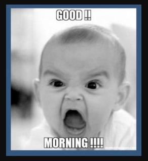 Best Good morning images funny - Sendimages