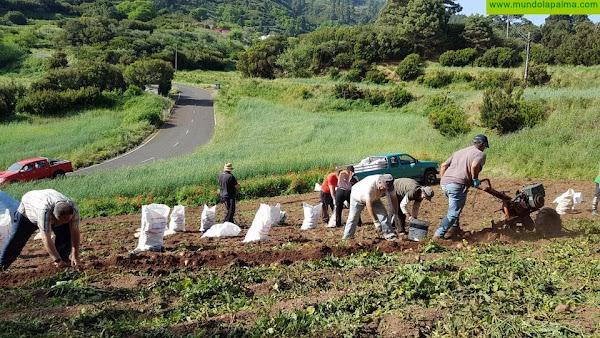 Comunicado conjunto: Garafía, Puntagorda y Tijarafe aprueban conjuntamente un manifiesto por la defensa de un modelo de futuro sostenible para la Comarca Noroeste de La Palma