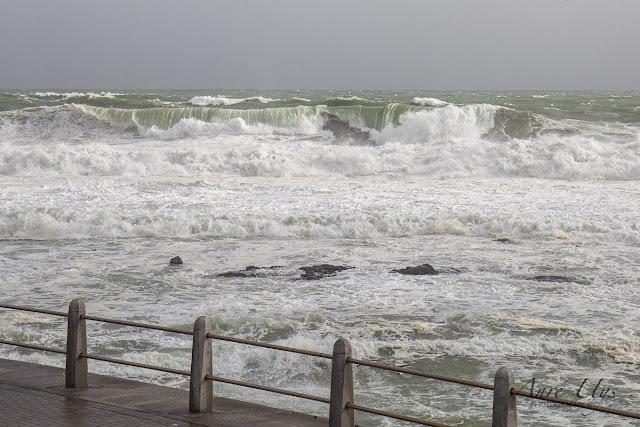 Rough Seas at Sea Point, Cape Town