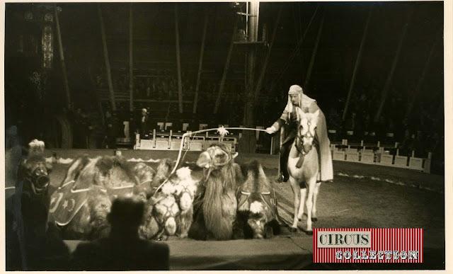 spectacle les exotiques présenté par Léon Smith cirque Knie