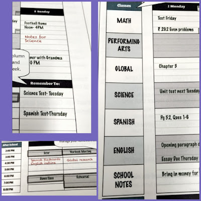 Order Out of Chaos Academic Planner sample collage