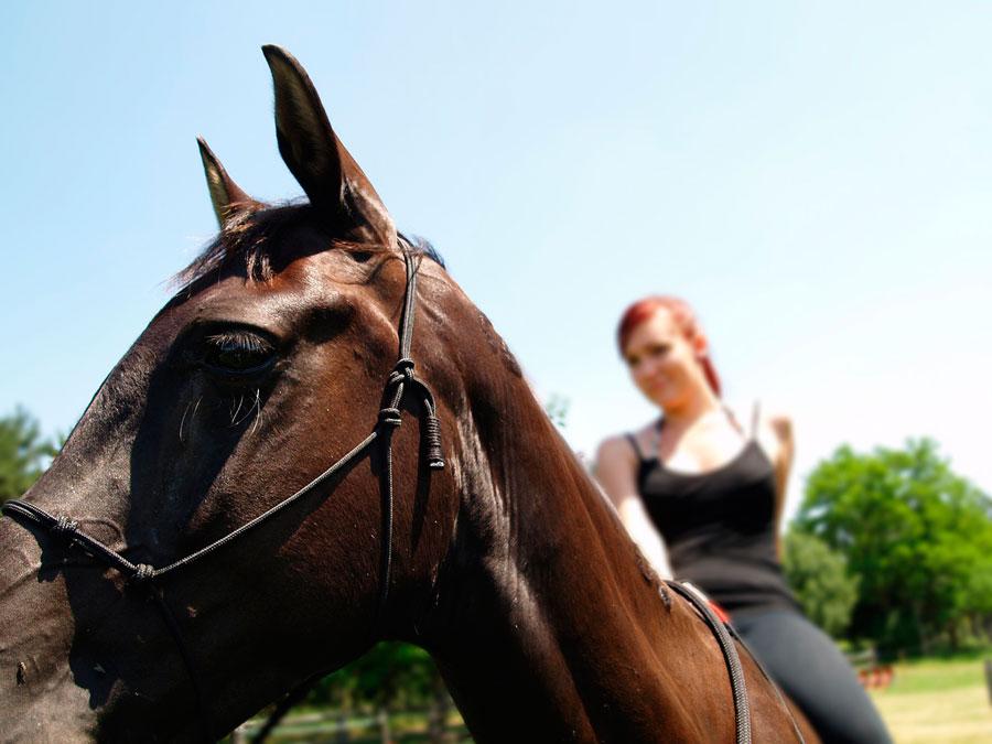 Montar a caballo Cazorla