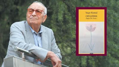 Ortadirek Dağın Öte Yüzü 1 Yaşar Kemal