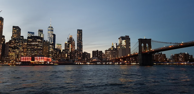 Manhattan from Brooklyn - Elisa Pavan