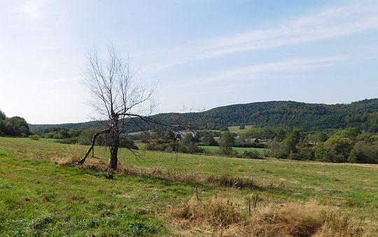 Lipowiec, łąki nad doliną Bełczy.