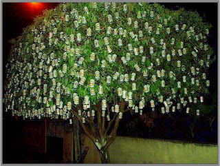 Já montei minha árvore de Natal!!!