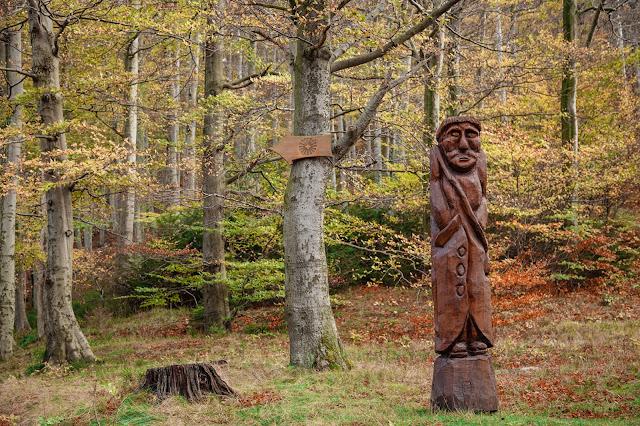 Besinnungsweg Bad Harzburg  Genusswandern im Harz  Wanderung-Harz 09