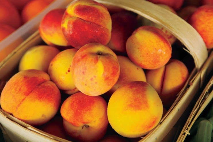 http://farmflavor.com/how-peaches-are-harvested-and-other-peach-fun-facts/