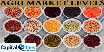Agri commodity calls, Agri Commodity Tips, Free  Commodity Tips, Free Agri Tips, MCX Tips Services, mentha oil tips,