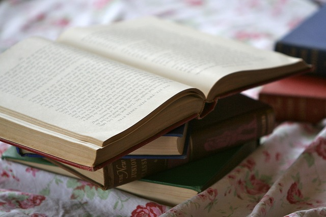 Biblionovels - książki o książkach