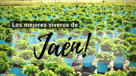 Listado de los Mejores Viveros de la Provincia de Jaén, España, donde puedes comprar plantas para tus proyectos