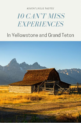 Adventurous Tastes | 10 Can't miss experiences in Yellowstone and Grand Teton