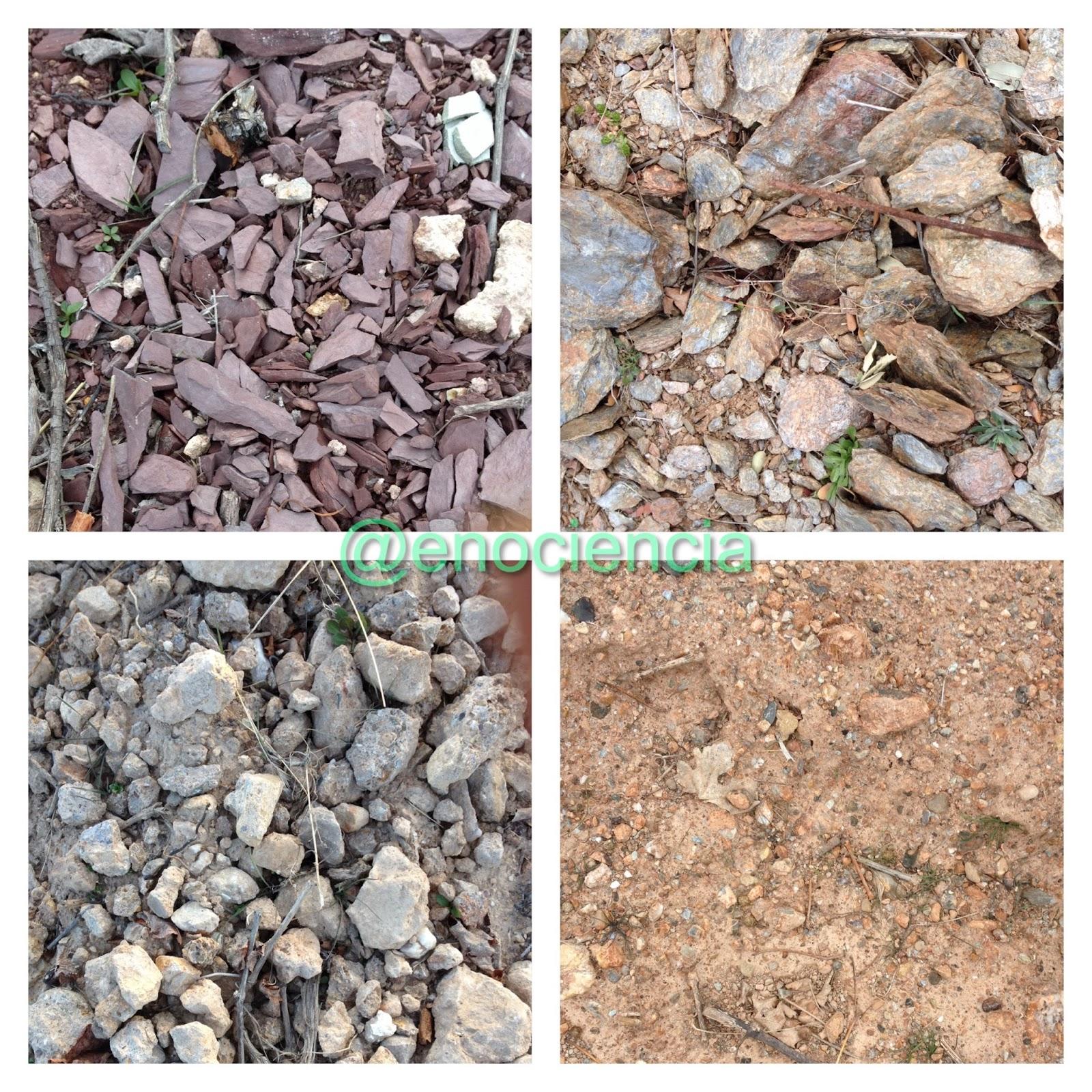 Enociencia influencia del suelo en el cultivo de la vid for Tipo de suelo 1