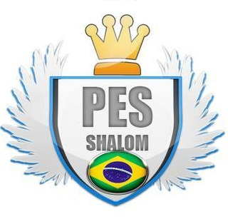 Shalom Patch 2017