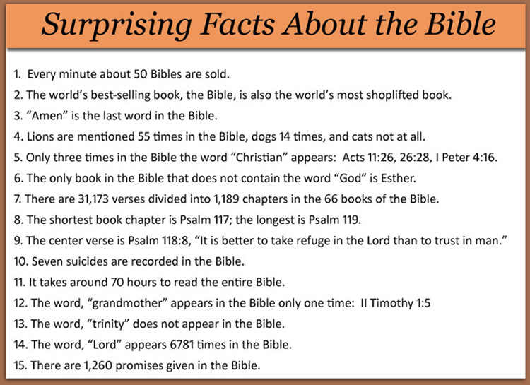 Jksaysok Amazing Facts About Holy Bible