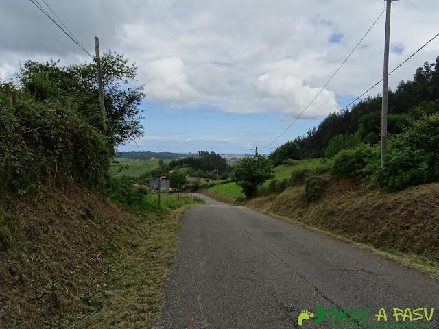 Carretera en Los Espinos, Molleda