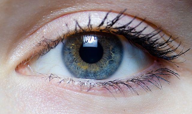 Eye Glue