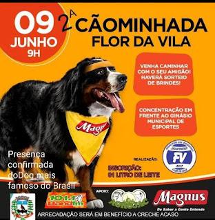 2ª Cãominhada da Flor da Vila será realizada no dia 09/06