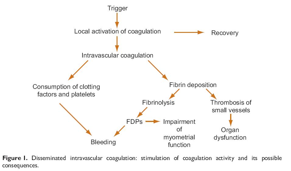 Koagulasi Intravaskular Diseminata stimulasi akhir