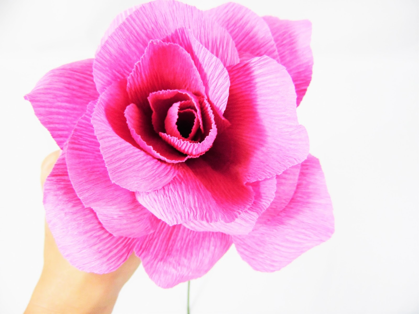 The secret to perfect crepe paper flowers catching colorlfies cut a couple of leaves and one thin long rectangle with fringe edges to wrap around the roses underside mightylinksfo