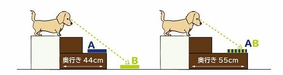 visão dos cães ao descer escadas