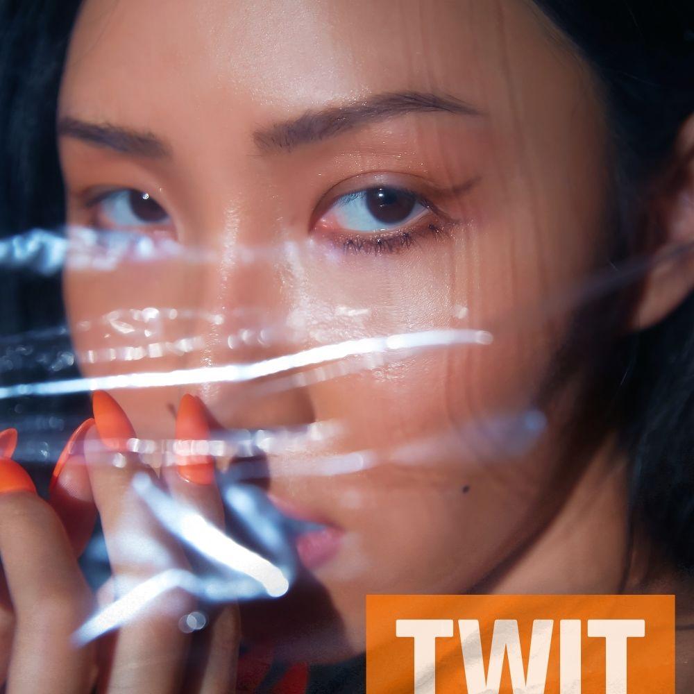 Hwa Sa – twit – Single (ITUNES MATCH AAC M4A)