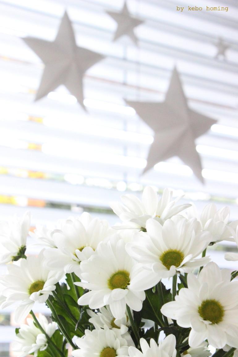 Adventsdekoration, Faltsterne, 3 D Sterne, Tutorial, Weihnachtsdeko,  Anleitung