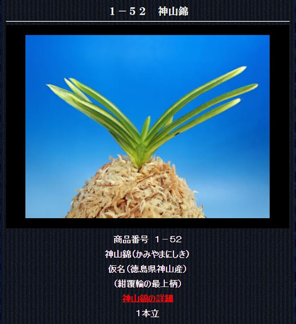 http://www.fuuran.jp/1-52.html