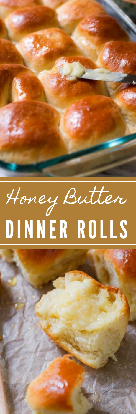Tried & True Honey Butter Rolls #dinner #healthyrecipes #yummy #food #easy