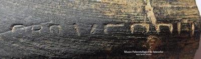 Hallazgos en Sefarad: Epigrafía hebraica en cerámica
