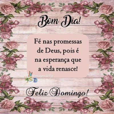 Fé nas promessas   de Deus, pois é   na esperança que   a vida renasce!  Bom Dia!  Feliz Domingo!