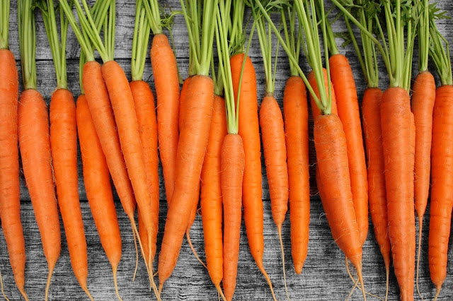 Grow and Enjoy Luscious, Healthy Organic Carrots