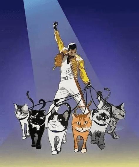 Freddie Mercury y su infinito amor por sus 9 gatos