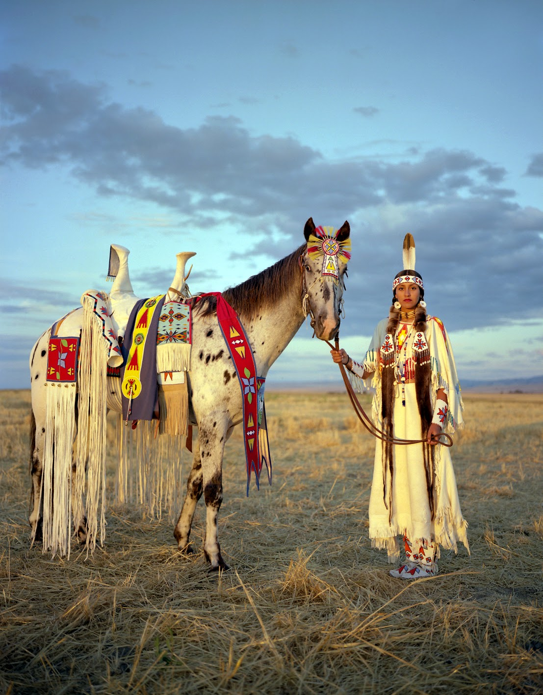 White Wolf The Horse S Role In Native American And