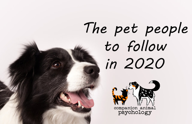 The pet people to follow on social media in 2020