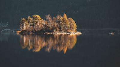 Island, Trees, Lake, Water, Nature