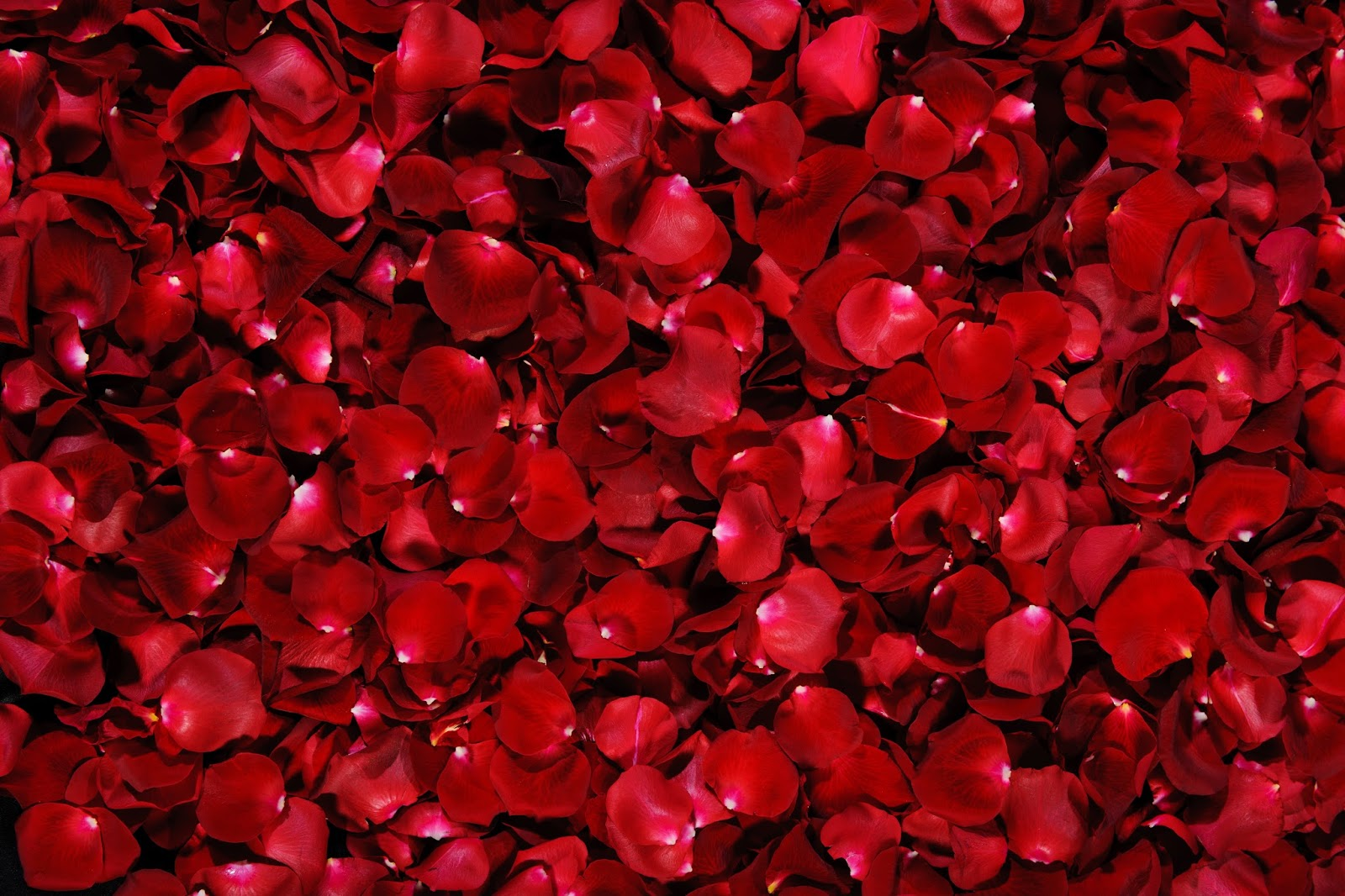 Kırmızı Rengin Faydası
