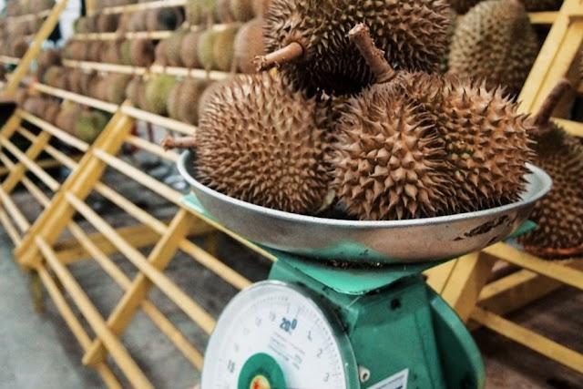 Hancur Hati Rakyat, Kerajaan Terengganu Lembab