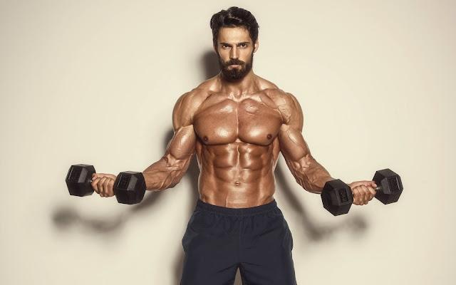 Musculos maiores