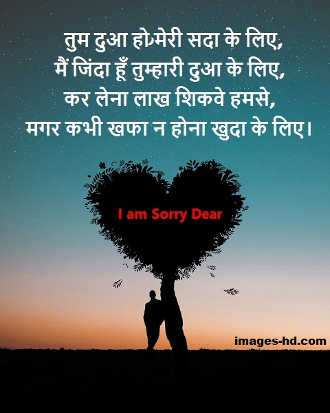 Sorry quotes for gf, for bf & best friend