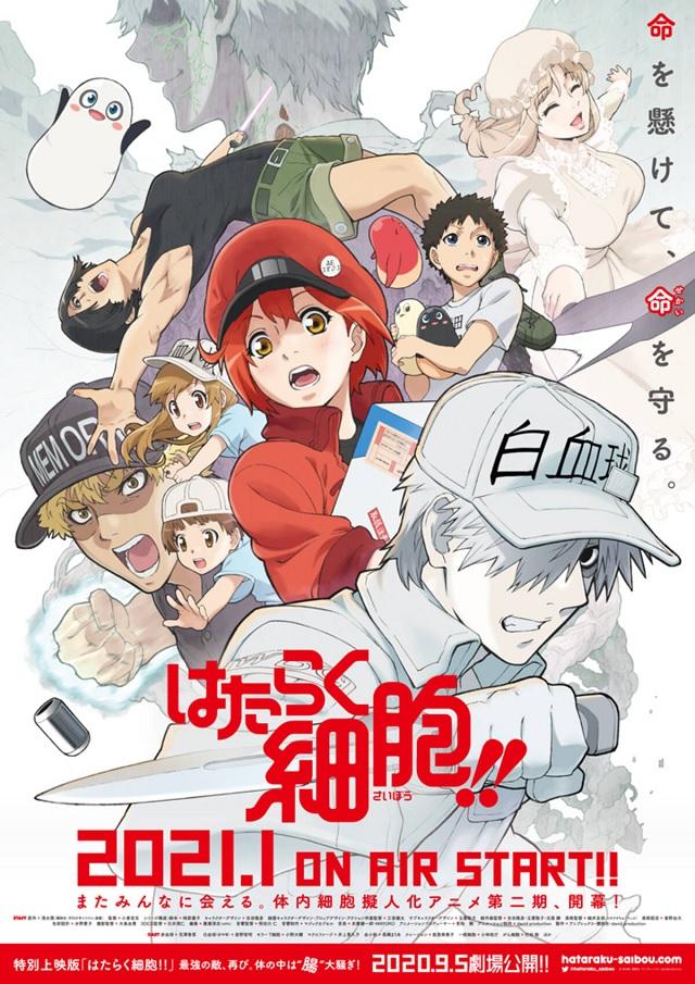 "ClariS - Fight!! Lyrics「TV Anime ""Cells at Work!!"" Season 2 ED」"