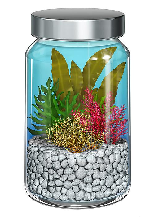 リアルイラスト、3DCG、サプリメント、海藻、ボトル、