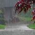 होशंगाबाद -  जिले में अभी तक 105.7 मिली मीटर औसत वर्षा दर्ज