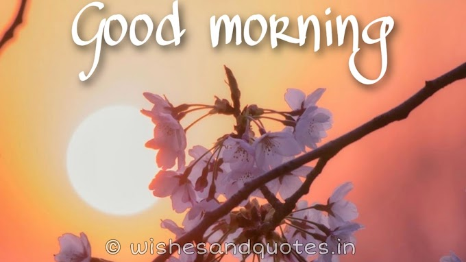 Best Good morning quotes status wishes and images